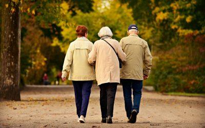 Gut begleitet mit Demenz – Fortbildung